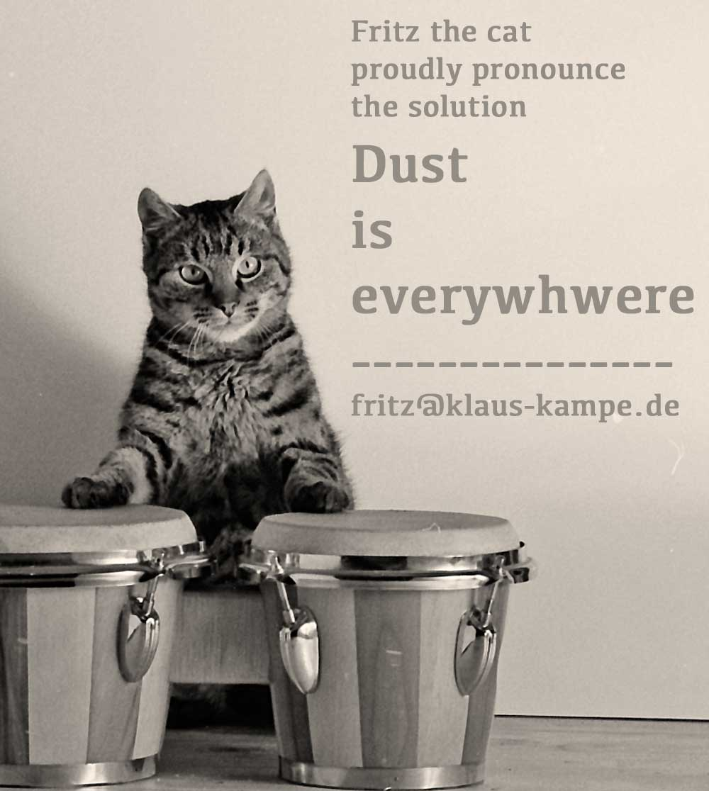 katze-everywhere