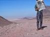 wadi-zeitung